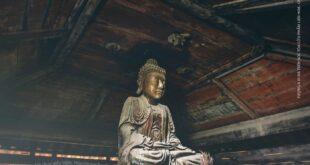 Tâm Huy Huỳnh Kim Quang: Phật Giáo Việt, Phật Giáo Tàu