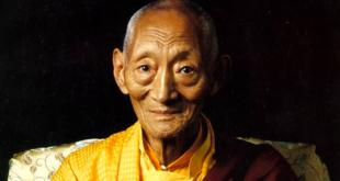 Kalu Rinpoche | Đạo Sinh chuyển ngữ: Đừng làm một Phật tử