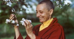Tenzin Palmo | Đạo Sinh chuyển ngữ: Trái tim của cuộc sống