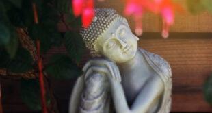 Lưu Văn Vịnh: Hiền như Bụt