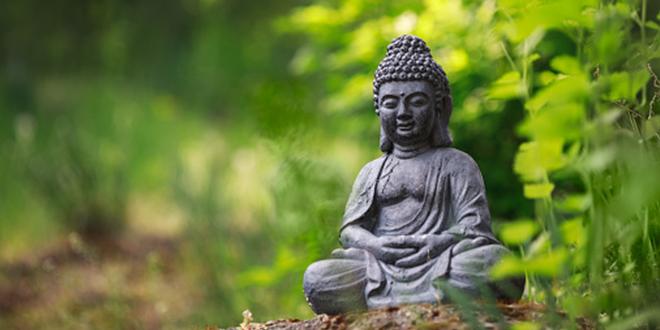 """Hạnh Chi: Phật tánh trong """"Phật sẽ thành"""""""